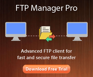 FTP Manager Pro